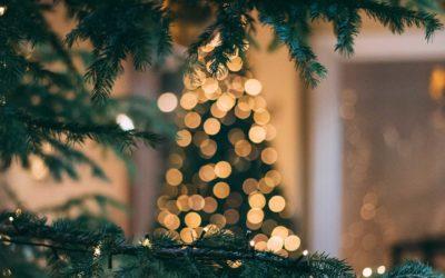 Kerst, openingstijden en thuisbezorgd